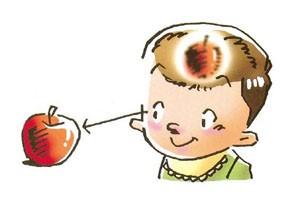 視力の発達にはものを見ることが大切です